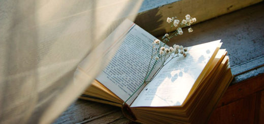 Культсовет: аромат дачного чтения