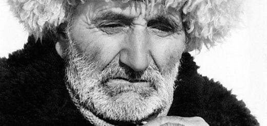 """Выставка """"Лицо кавказской национальности"""" открылась в Сочи"""